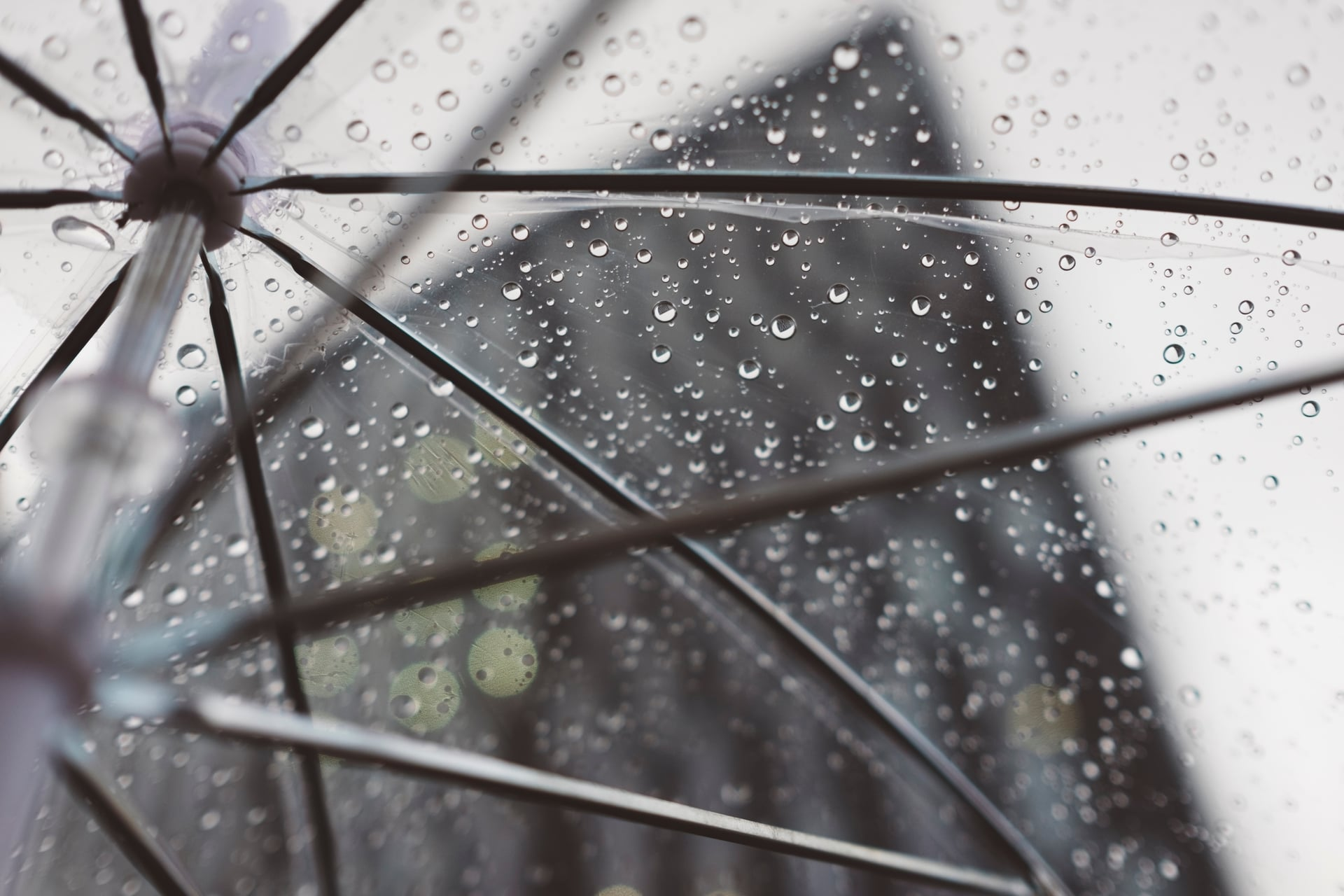 clear umbrella with raindrops